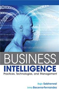 Download Business Intelligence: Practices, Technologies, and Management fb2, epub