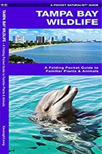 Download Tampa Bay Wildlife: A Folding Pocket Guide to Familiar Plants and Animals (A Pocket Naturalist Guide) fb2, epub