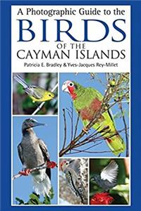 Download A Photographic Guide to the Birds of the Cayman Islands fb2, epub